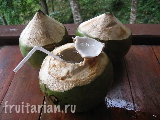 Молодые тайские кокосы