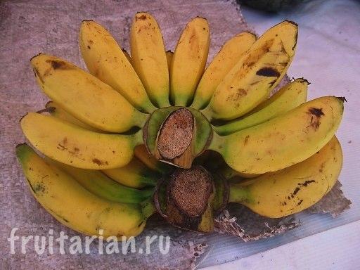 Тайские гладкие маленькие бананы
