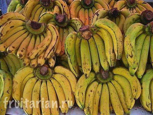 Бананы обычные