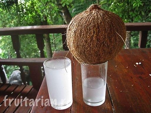 Сок полностью зрелых тайских кокосов