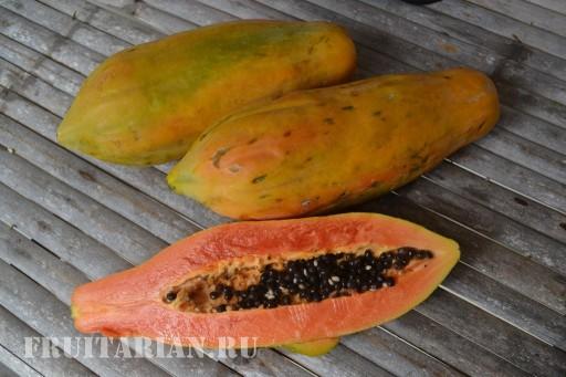 tajskaja-papajja-05