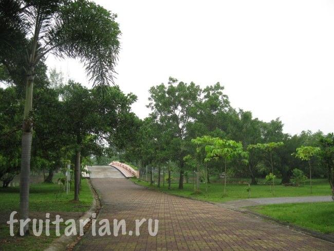 Парк в Пхукет-Тауне