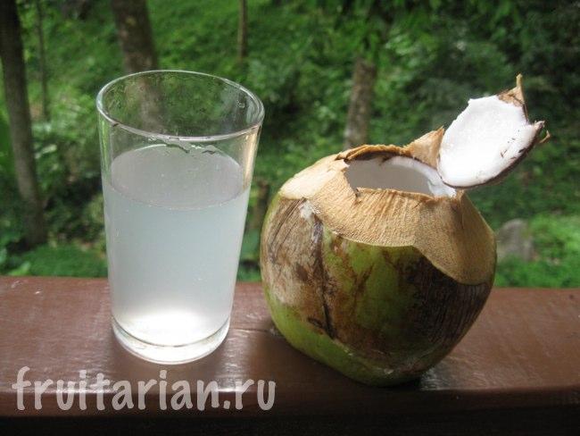 Сок тайских мини кокосов