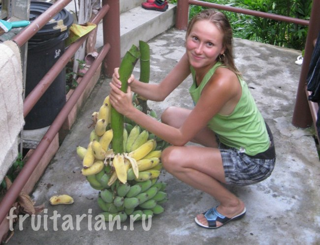 Бананы с ветки