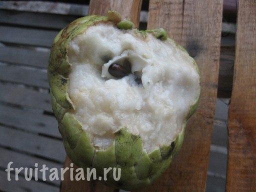 сахарное яблоко