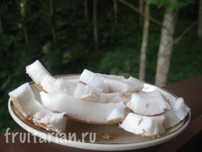 очень твердые молодые кокосы