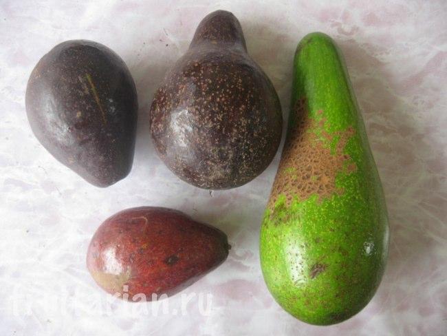 авокадо в малайзии