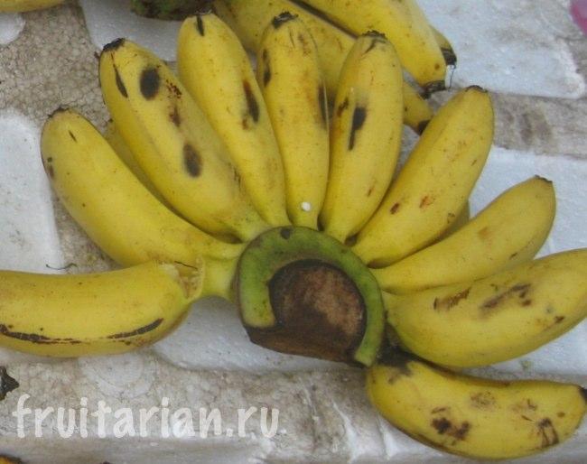 Маленькие полукруглые бананы (белые внутри)