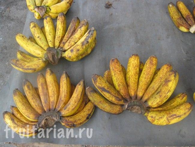Бананы со вкусом сушёных