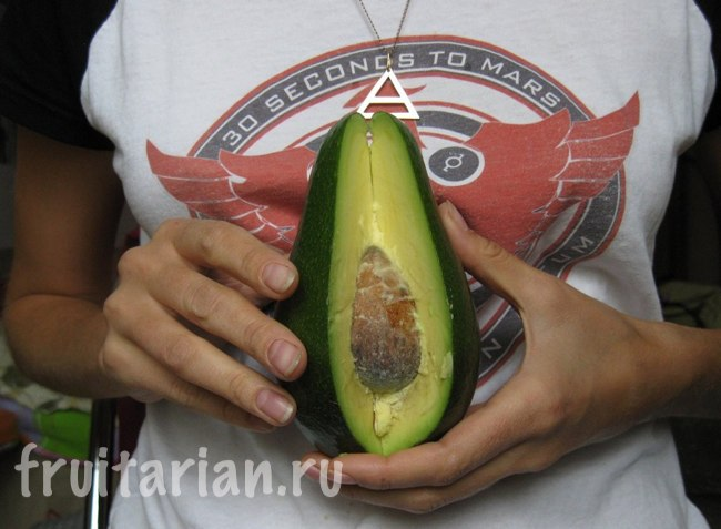 красивый авокадо
