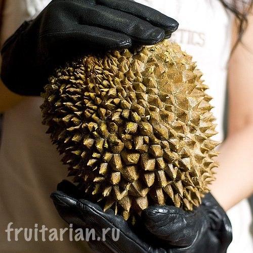 перчатки для разделки дуриана