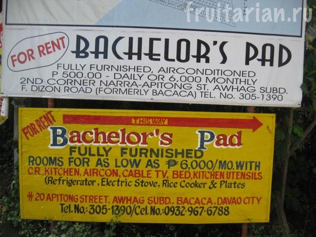 Bachelors Pad