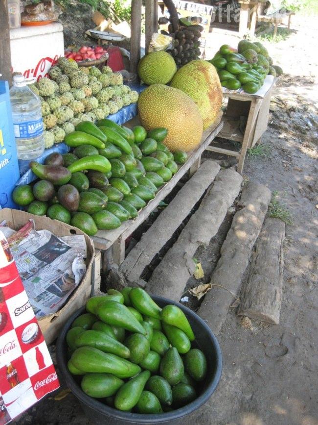 фруктовый рынок у порта