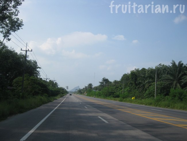 дорога на Панган