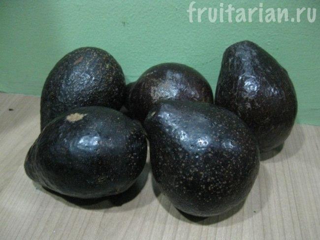 черные маленькие авокадо