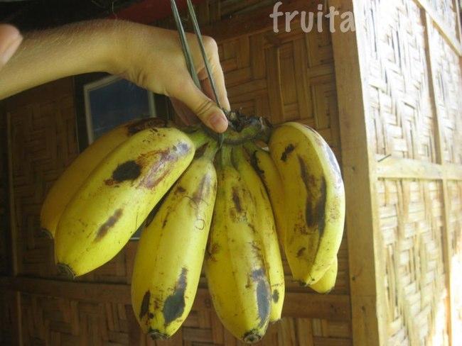 гладкие бананы