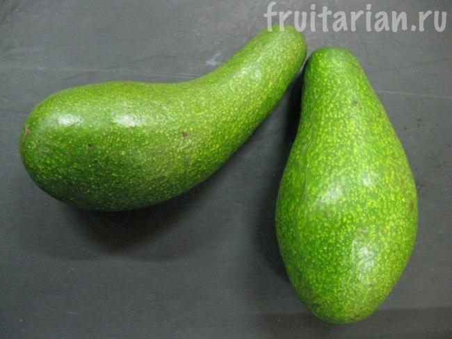 авокадо Фуэрте филиппинские