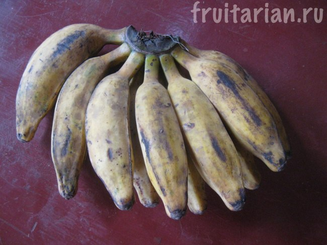 длинные волосатые бананы