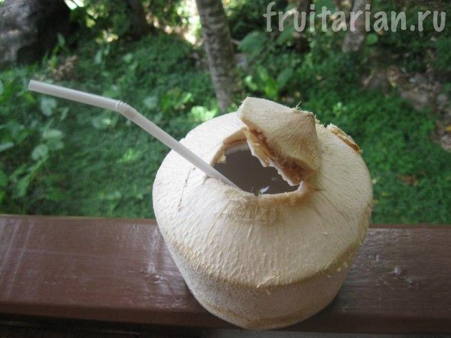 кокос обтёсанный