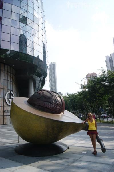 Памятник авокадо