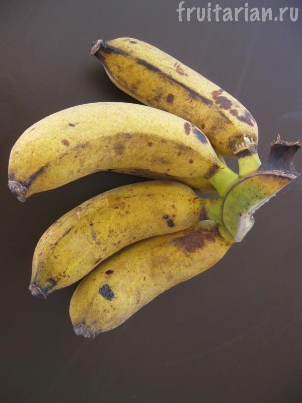 бананы Раджа