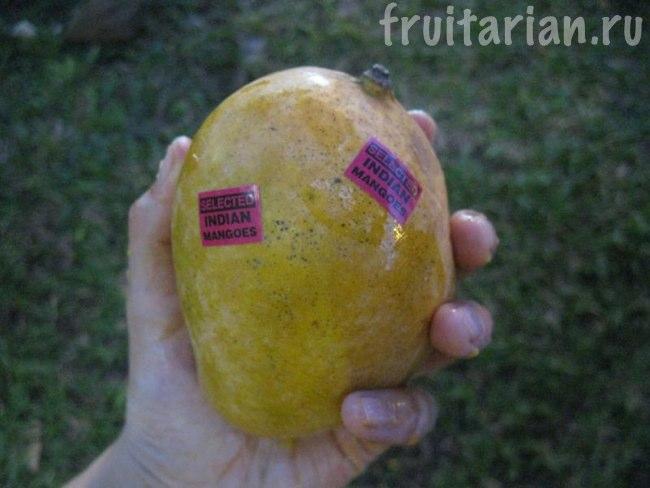индийские манго