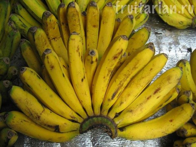 Удлинённые филиппинские бананы