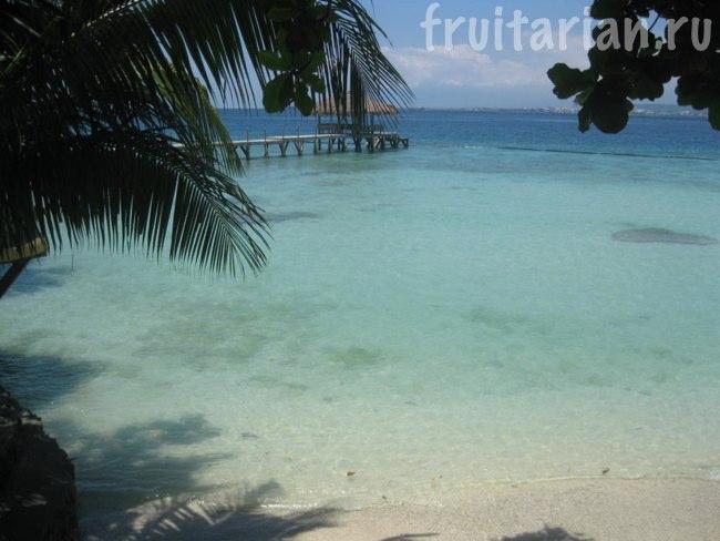 Пляж Chemas