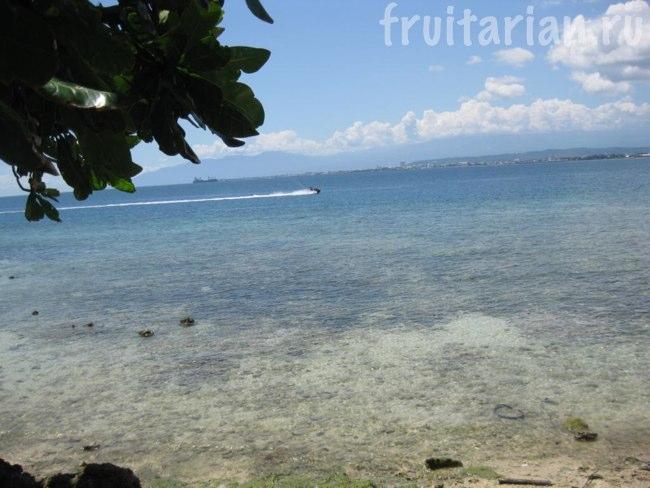 дикий пляж с подводным миром