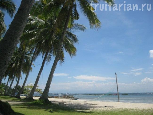 Пляж Marex