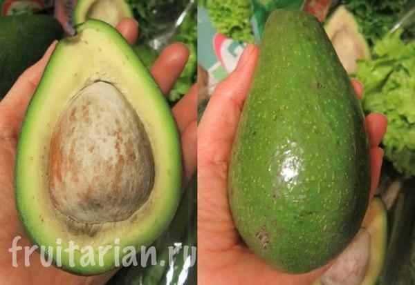 avocado-Bernecker