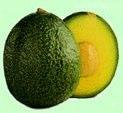 авокадо Reed