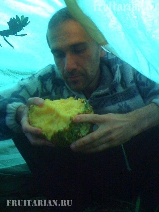 kak-est-ananas1