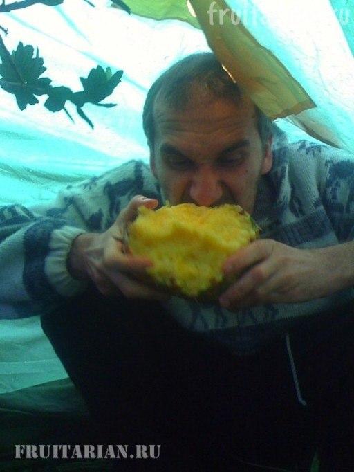 kak-est-ananas2