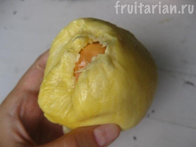 Дуриан Cobe Yellow