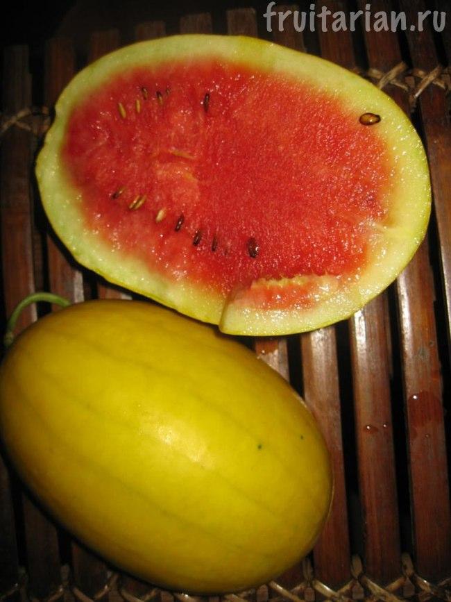 жёлто-красный арбуз