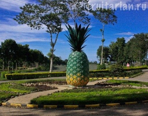 ананас памятник