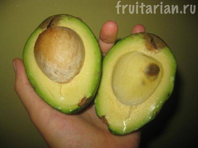 авокадо Испания