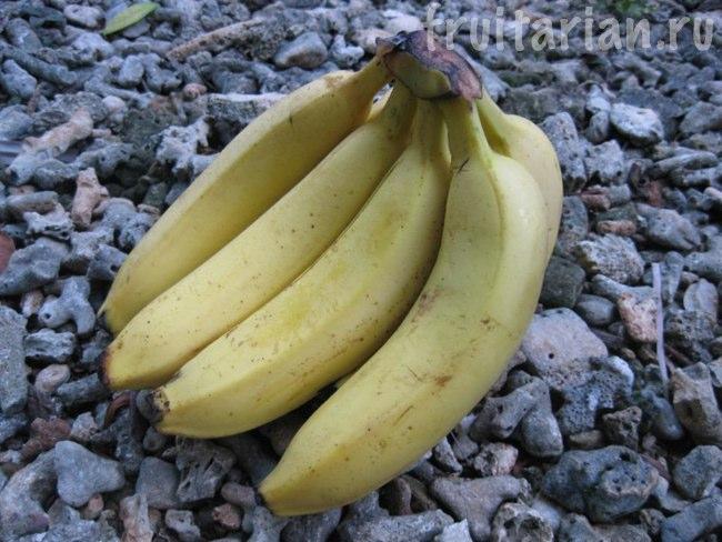 бананы Cadenvish Dole