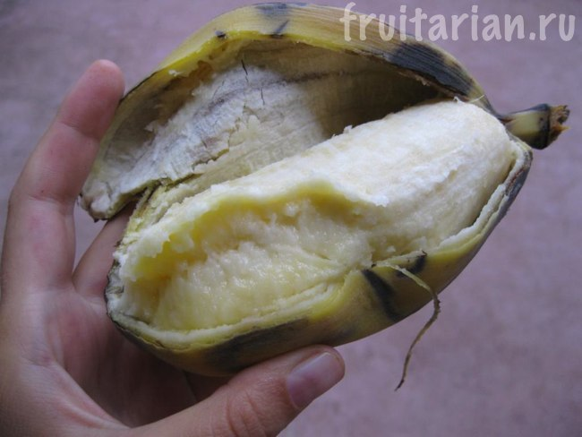 банан Cardava