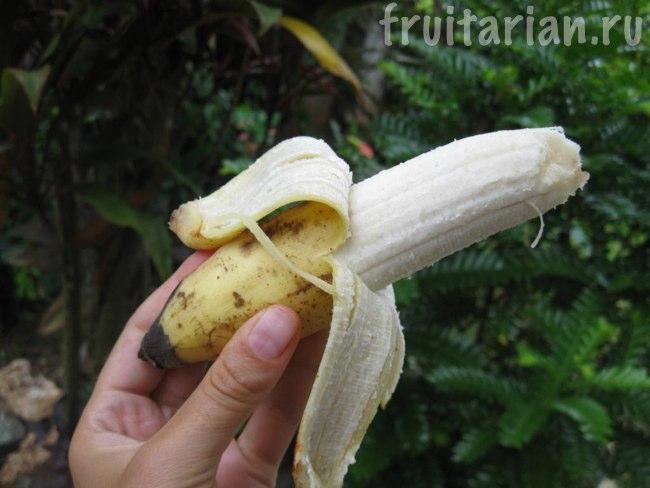 банан Latundan