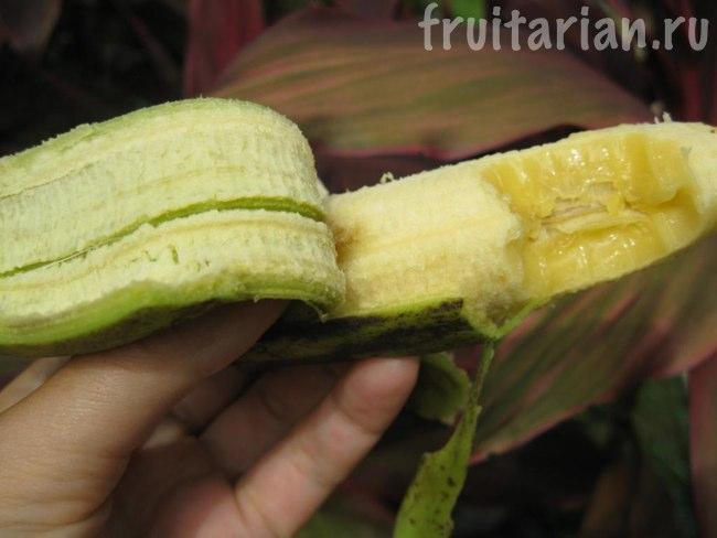 зелёный банан