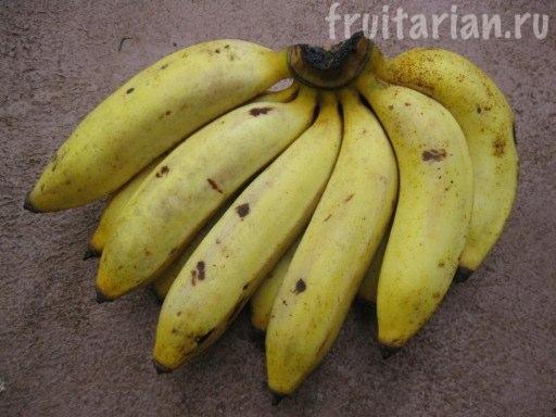 бананы Латундан