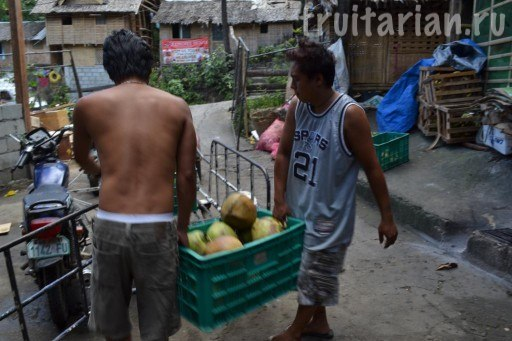 доставка кокосов
