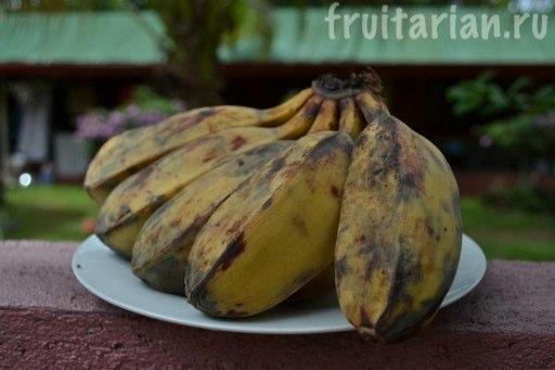 Бананы Saba