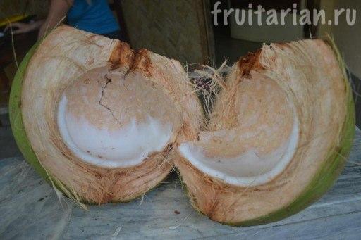 мякоть молодых кокосов