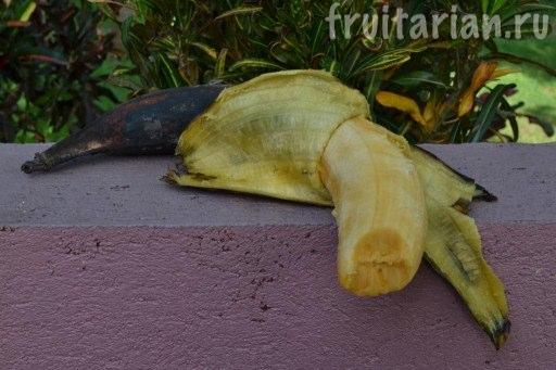 Бананы Tindok