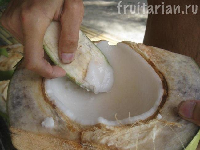 Что можно есть в кокосе