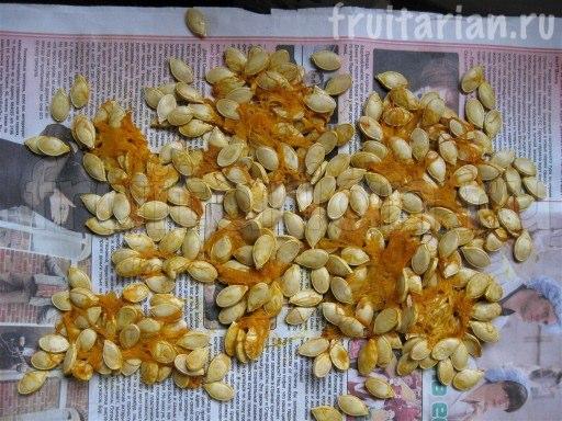 Основные отличия семян тыквы от кабачков