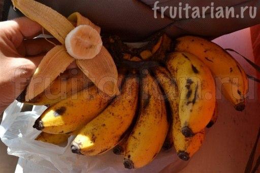 Бананы сорта Тундан